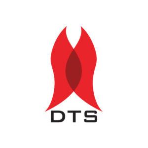 DTS hjemmeside 1